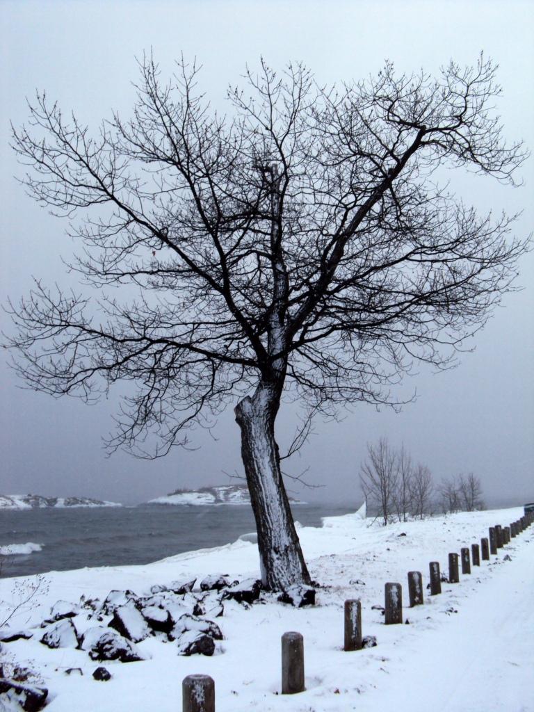 Fun Fun Fun When It S Zero Degrees Outside Lake Superior Spirit