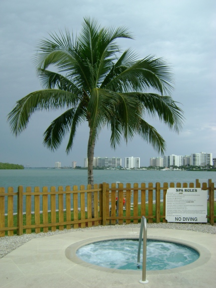 Palm tree & whirlpool.   Life doesn't get much better than this...