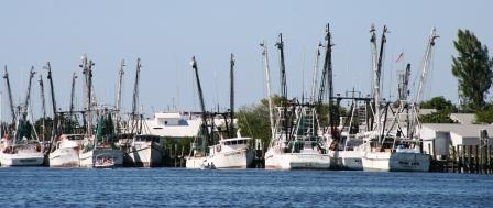 """The weather has the shrimp boats in a frenzy"".  --Jimmy Buffett"