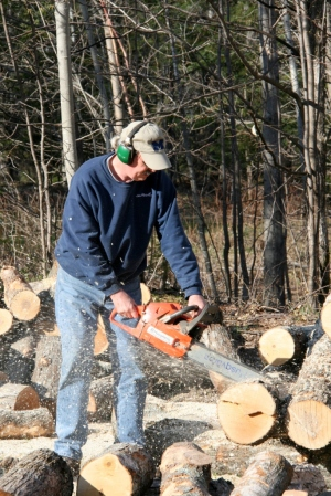 Chainsaw.  Firewood.