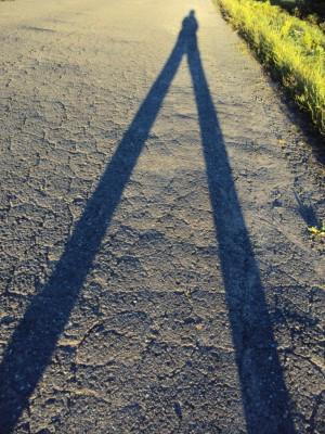 Playful shadows