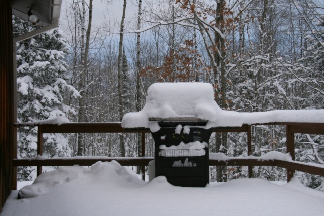 "Our little (uncovered) grill in the Big Woods in the First 5"" snow."