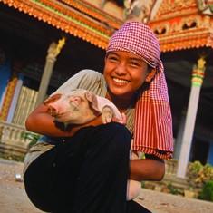 Heifer International Pig