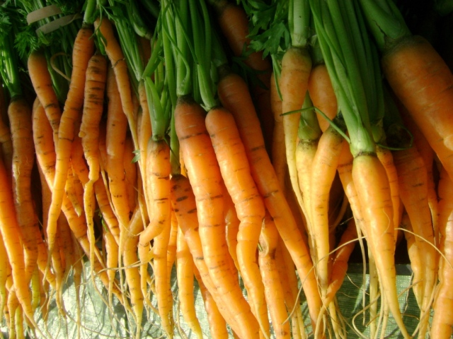 Magical carrots