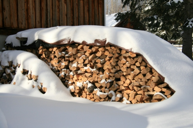 What the wood pile looked like last January.  OK, it looks about the same today, maybe a tad less snow.