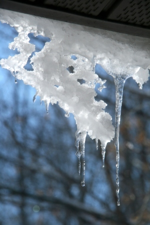 Don't you love the patterns icicles form as they melt?