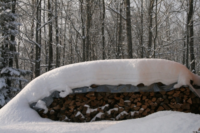 Our woodpile