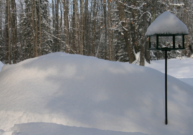 Note the size of the snow bank by the bird feeder.