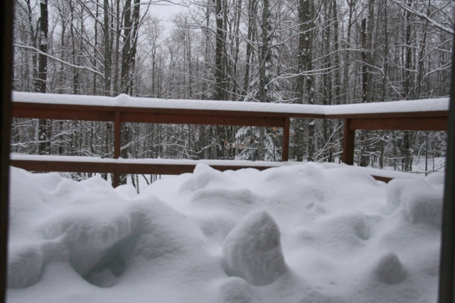 The snow looks like craters on the deck this morning.  Imagine Kathy shoveling.