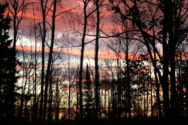 November, 2012.  Back in the woods.  A beautiful sunrise through the trees.