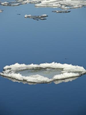Circular bowls of ice