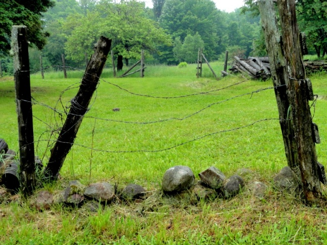 Old wire fence, field.