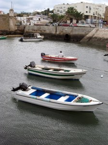 Boats heading out to meet fish
