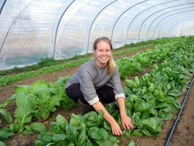 Volunteering at organic farm in Belgium