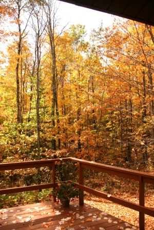 Looking to the right off our deck
