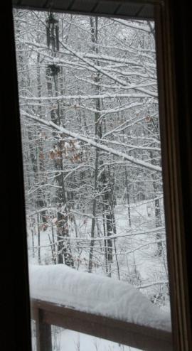 From side window overlooking deck
