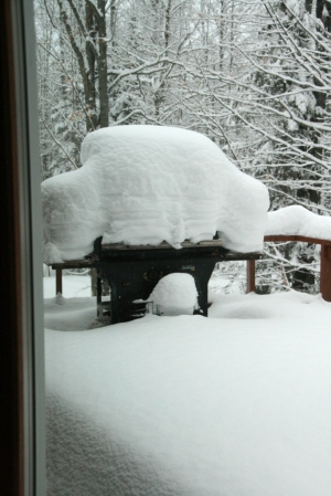Our grill.  Through deck window.