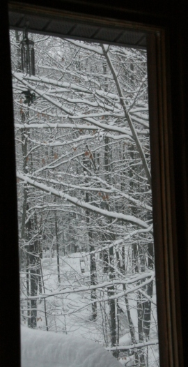 Another view through side deck window