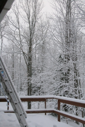 Good morning, deck.  Good morning, ladder leading to roof for roof-shoveling convenience.
