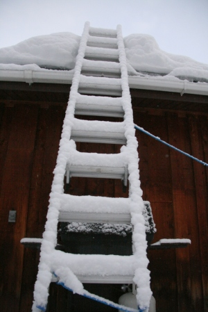 Ladder to heaven  (tied down in case of blizzard winds)