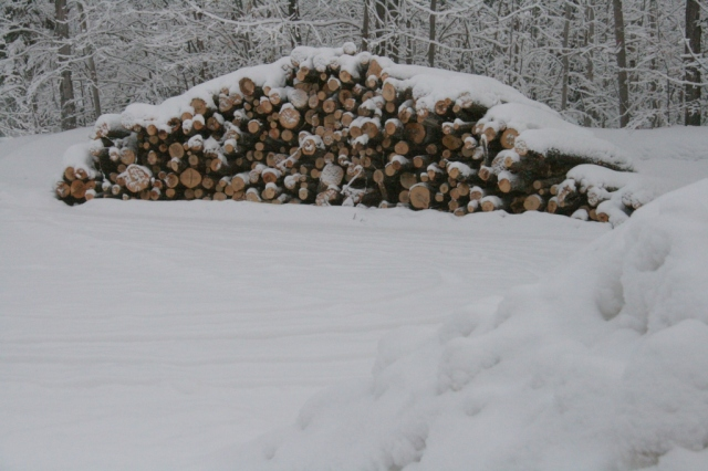 Next year's wood.  Cutting, splitting, hauling, stacking start in spring.