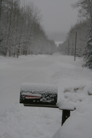 Looking down our road toward the ice-covered Huron Bay