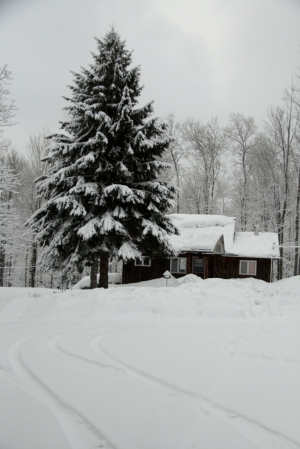 Our Little House in the Big Woods