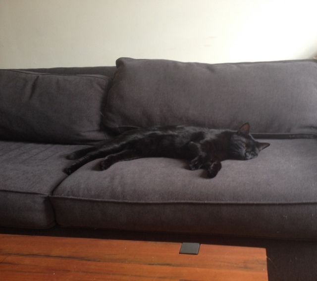 Kinder on the couch