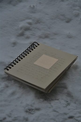 Journal in the snow