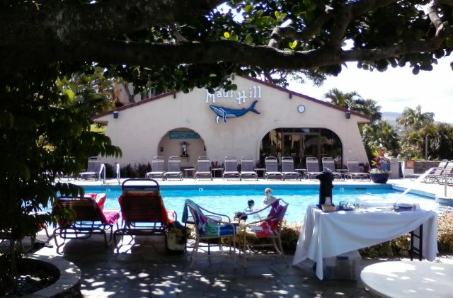 Maui Hill pool